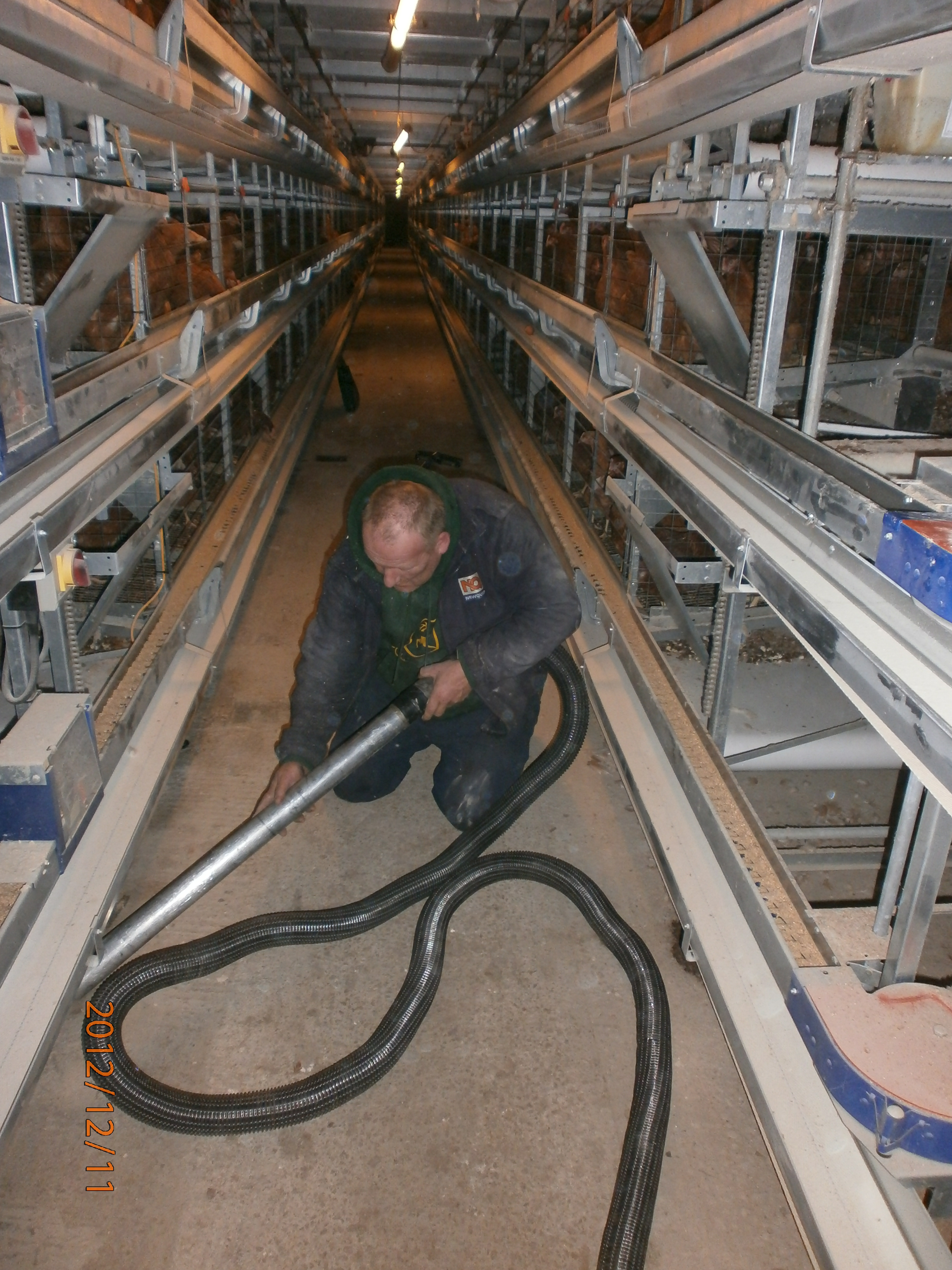 Craig Wilkinson Cleaning His Poultry Sheds With A Big Brute Vacuum